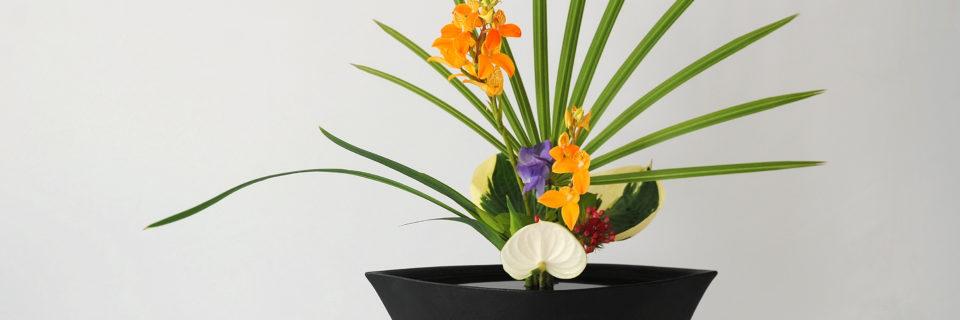 Ikebana Ikenobo art floral japonais